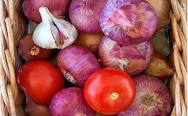 Fria radikaler och antioxidanter på Kurera.
