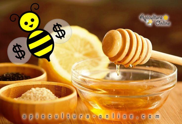 apicultura-online-money-bee