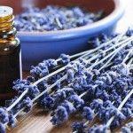Le marketing olfactif, un savant mélange pour une satisfaction client top #emarketing