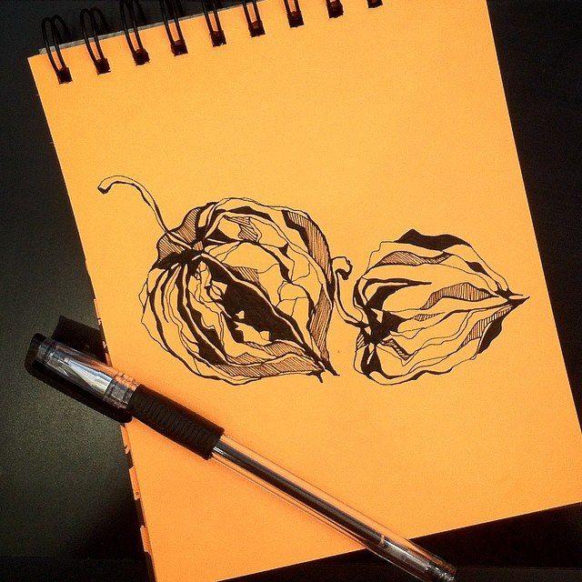 #графика #dudling #pen #girl #blackandwhite #blackline #drawing #instaart #illustration #peony #flowers #line #painting #drawdrawdraw #sketch #пионы #topcreator #creativpaper #flowers #topcreator #peonies #IDraw #instaart #artist