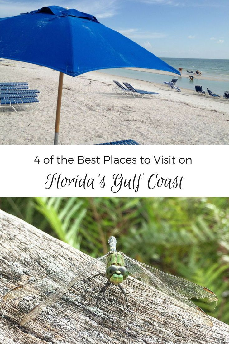 4 Of The Best Places To Visit On Florida S Gulf Coast Gulf Coast Florida Cool Places To Visit Florida Travel