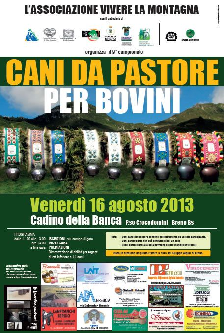 Campionato Cani da Pastore per Bovini a Breno http://www.panesalamina.com/2013/15574-campionato-cani-da-pastore-per-bovini-a-breno.html