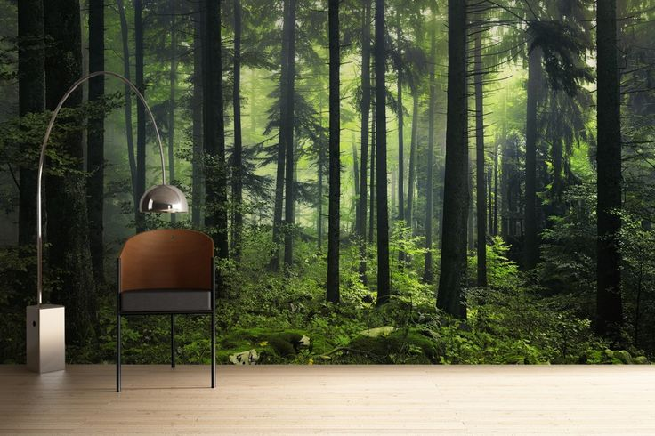 This Misty Green Forest Mural is a lush haven of beautiful green foliage and makes an amazing feature wall.