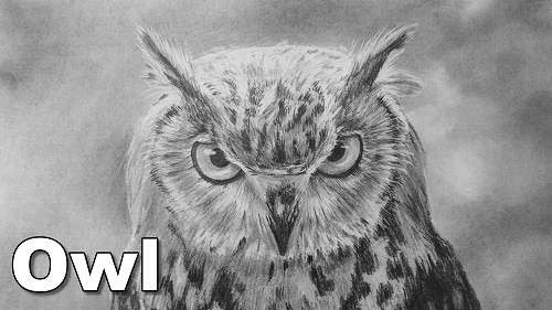 How to draw an owl draw an owlonline art classesfree textdrawing