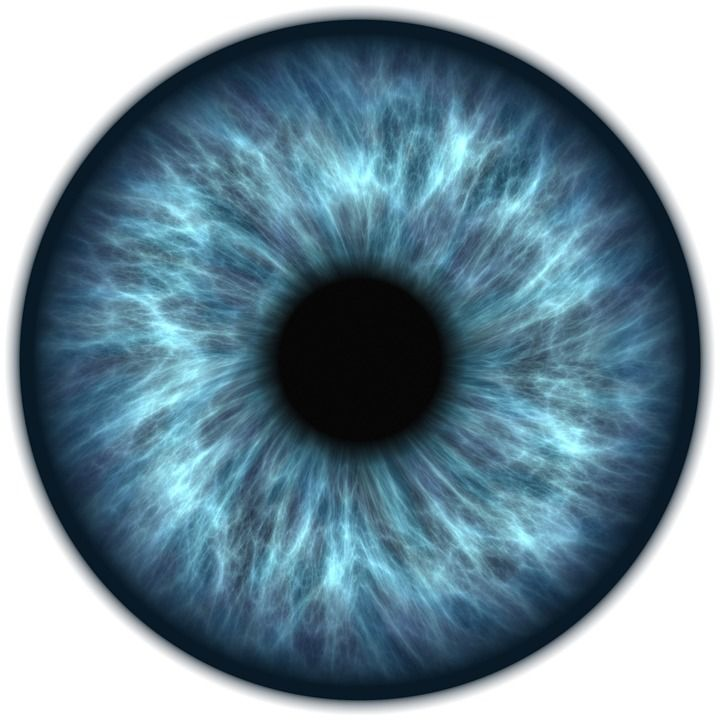 Image result for eye (Pixabay, 10/16)✖️No Pin Limits✖️More Pins Like This One At FOSTERGINGER @ Pinterest✖️