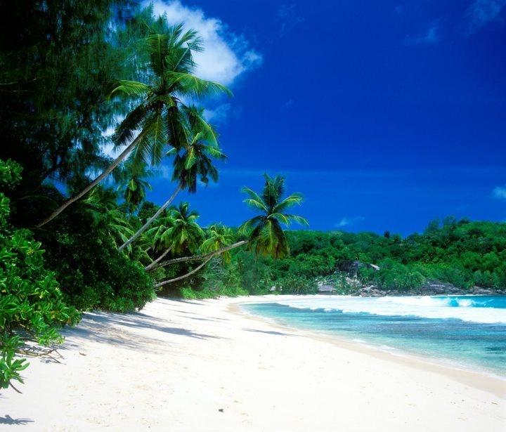 Seychelles Beach: 68 Best My Heritage..Scotland Vs Seychelles :) I'm A Lucky