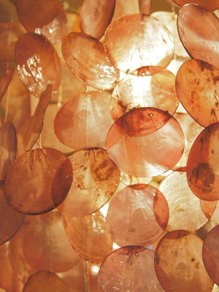 Shell shade lamp