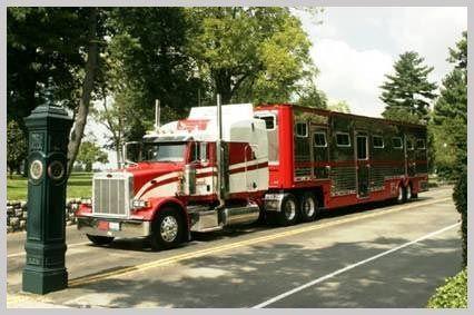 Creech Horse Transportation