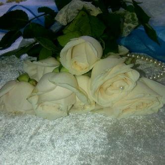 pearls n roses