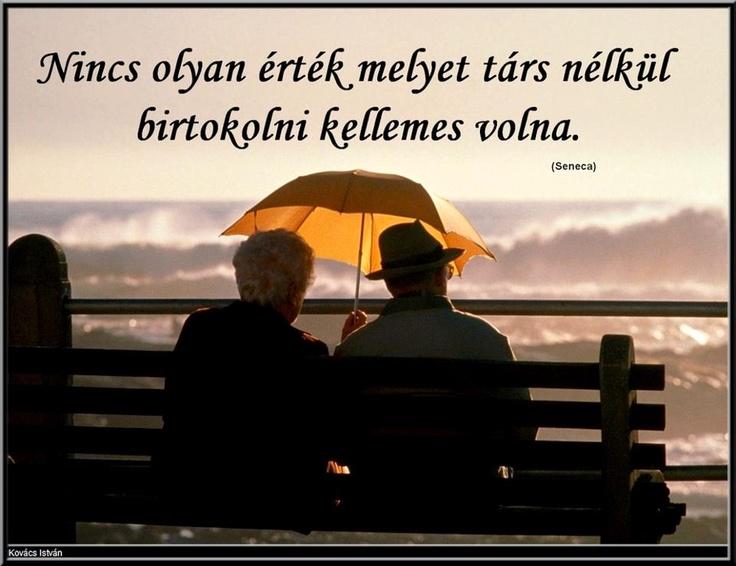 """""""Nincs olyan érték, amelyet társ nélkül birtokolni kellemes volna."""" (Seneca: Erkölcsi levelek, Kurcz Ágnes fordítása) - A kép forrása: Mondd, hogy szeresselek? # Facebook"""