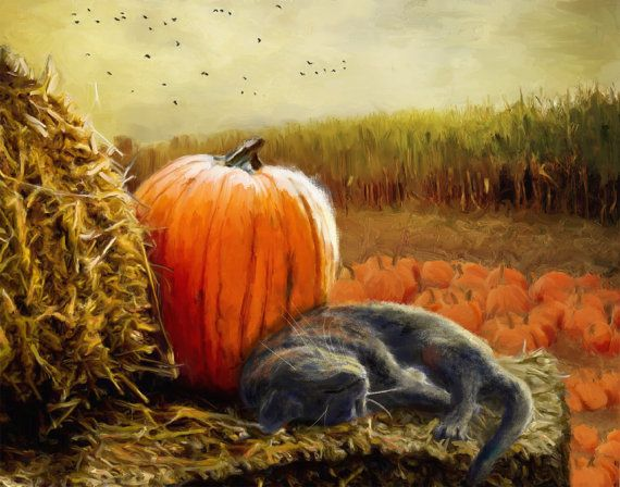 Image result for Fall cat paintings