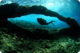 Visit Benidorm - Submarinismo http://www.hmontemar.com