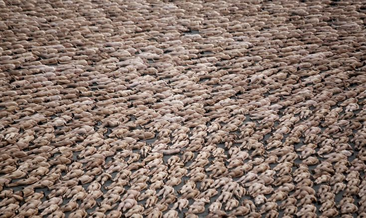 Thousands of naked volunteers pose for U.S. photographer Spencer Tunick at Mexico City's Zocalo square on May 6, 2007