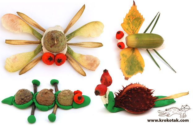 bugs using clay and nature elements