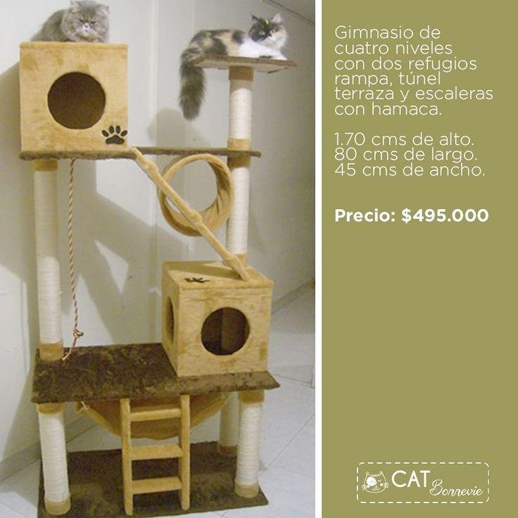 Ordene su gimnasio de gatos hoy mismo y reciba descuento del 10% whatsapp 310 2512125 #mueblesparagatos #repisasparagatos #rascadores #gimnasiosparagatos #catification #catlover #cat #gato #bogota no olvides visitarnos en facebook https://goo.gl/SoxhHJ #gatosbuenavida #gatosbonnevie #catbonnevie