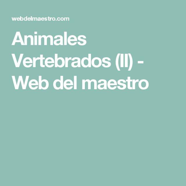 Animales Vertebrados (II) - Web del maestro
