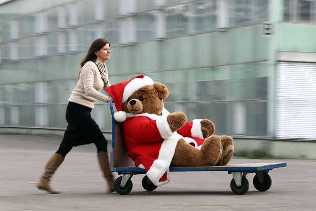 A christmas teddy bear is wheeled along on a trolley at the Steiff stuffed toy factory on November 23, 2012 in Giengen an der Brenz, Germany. Founded by seamstress Margarethe Steiff in 1880, Steiff has been making stuffed teddy bears since the early 20th century ever since her nephew Richard Steiff exhibited the first commercially produced teddy bear in Europe in 1903. Teddy bears are among the   http://avaxnews.net/fact/Traditional_Teddy_Bears_Prepared_Ahead_of_Festive_Season.html