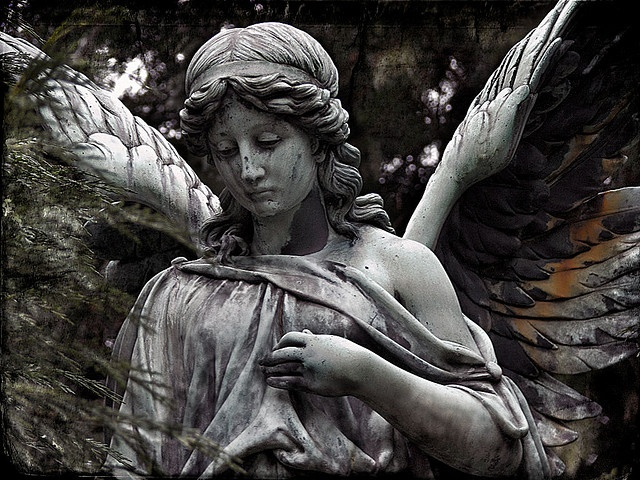 """""""Immortal Guard"""" an #angel in the """"old cemetery"""" in Darmstadt, Germany by Mandragor.de"""