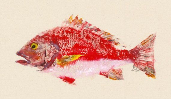 Red Snapper  Gyotaku Fish Rubbing  Limited Edition by fredfisher,  Reminds me of Japan / Okinawa