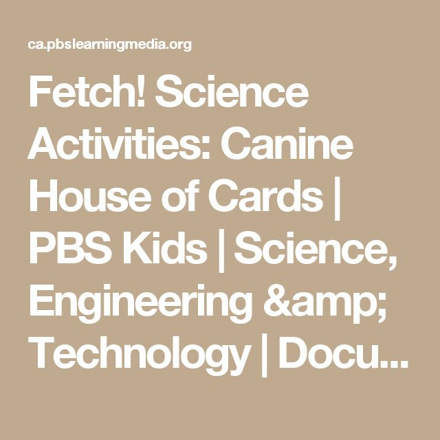 Fetch! Science Activities: Canine House of Cards | PBS Kids | Science, Engineering & Technology | Document | PBS LearningMedia