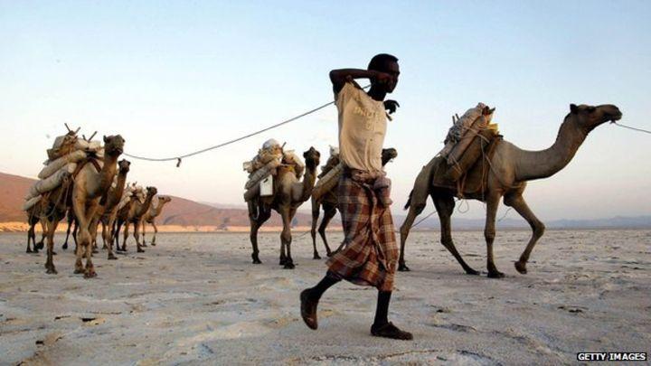 Djibouti country profile - BBC News