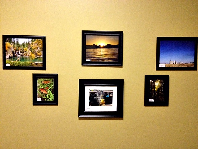 """Another section of our """"gallery"""""""