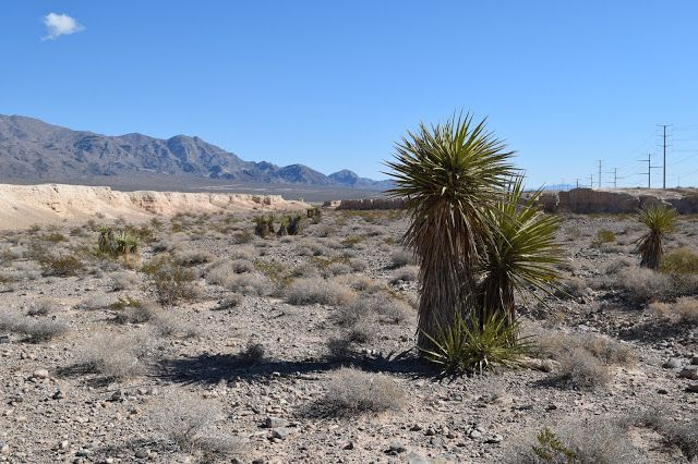 Vegas Girl: In the Badlands of the Tule Springs Fossil Beds Na...