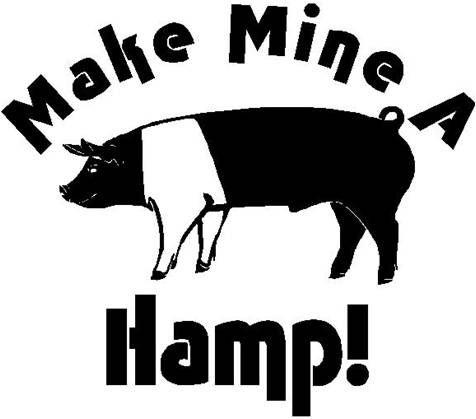 Hampshire pigs rock