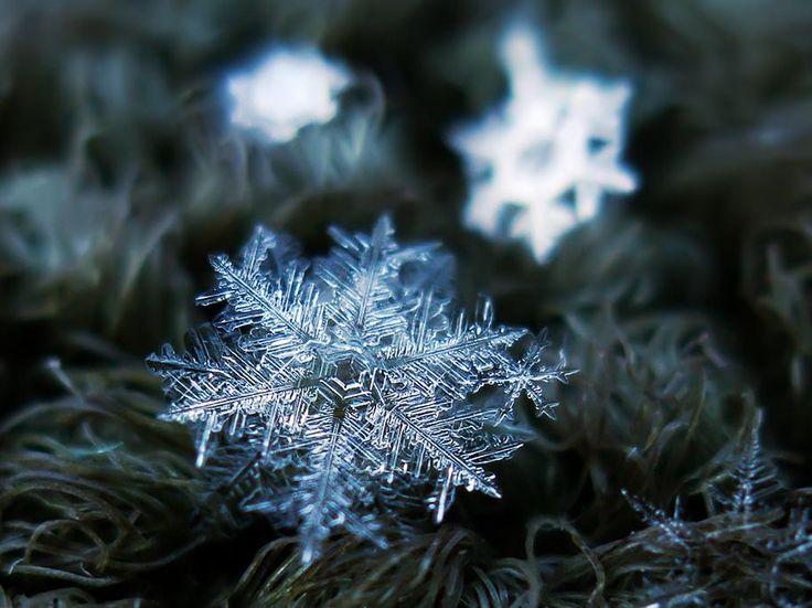 snowflake closeup alexey kljatov 14