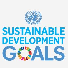 Sustainable Development Goals .:. Sustainable Development Knowledge Platform