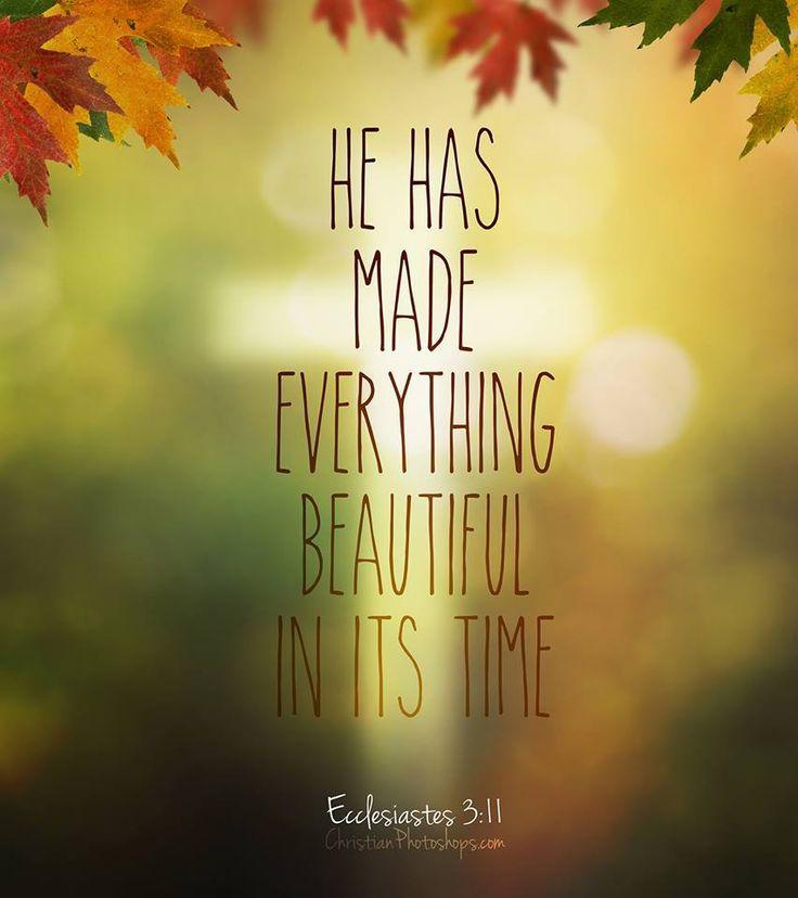 391 best I am a Christian images on Pinterest | Bible ...
