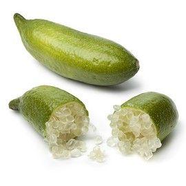 citron caviar: une rareté très recherchée des gastromomes. La pulpe est constituée de petites perles translusides qui éclatent en bouche et libèrent toutes leurs saveurs.