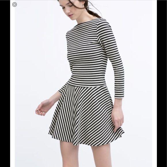 Zara Striped Long Sleeve Skater Dress Sz S Striped Jersey Dress Long Sleeve Skater Dress Womens Dresses