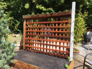 First raised garden bed made with trellis and to save space I made a planter for the top for my strawberries to hand and be protected from our charming outdoor critters. I will be making another exactly as you see for beside it and the white post will be part of an arbor that will be made to join the two together with a gate. I will post it when it's done.