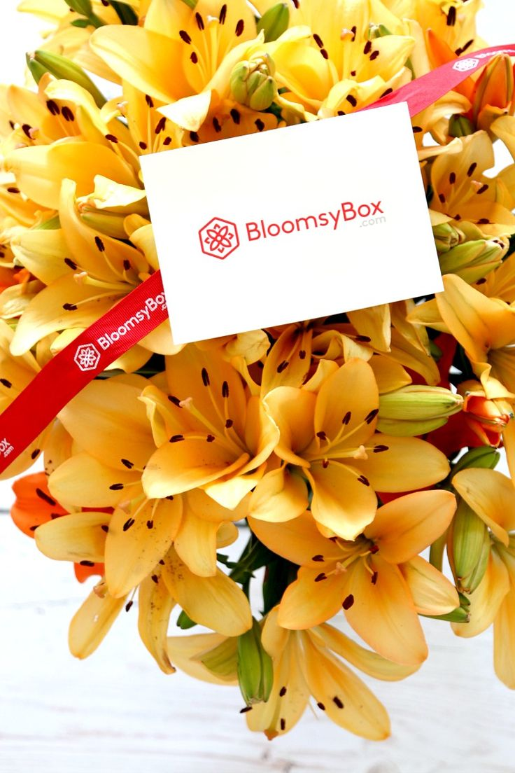 Bloomsy Box: Subscription for Monthly Flower Deliveries, Perfect for Loving Mom, Wife, Girlfriend or Yourself Year Round