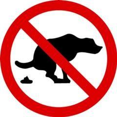 Незаконний вигул собак: боротьба та наслідки