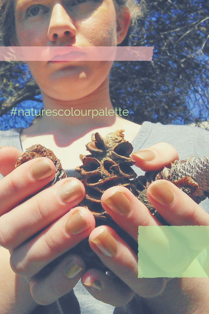 Promo for #naturescolourpalette on @naturescolourpalette (Instagram) created by Creative Process Workshop.
