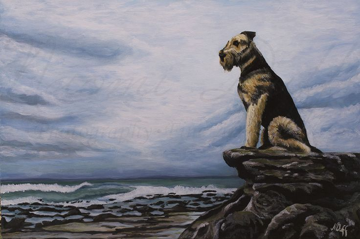 Airedale 2014  commissioned work