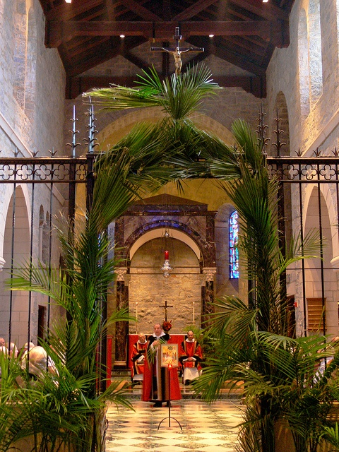 Easter Decorating Ideas For Church 28 best palm sunday church decor, graphics and traditions images