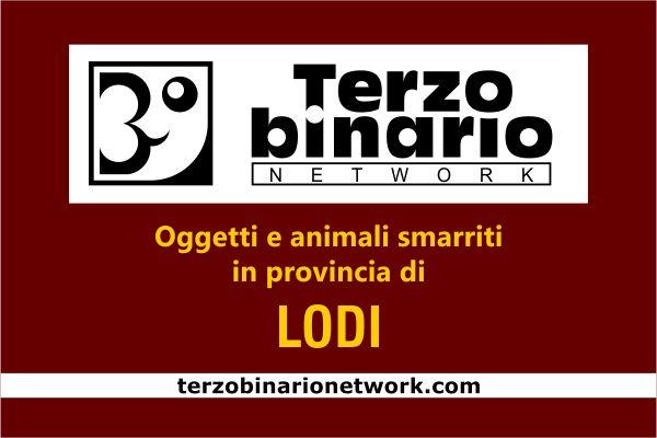 Oggetti e animali smarriti in provincia di Lodi