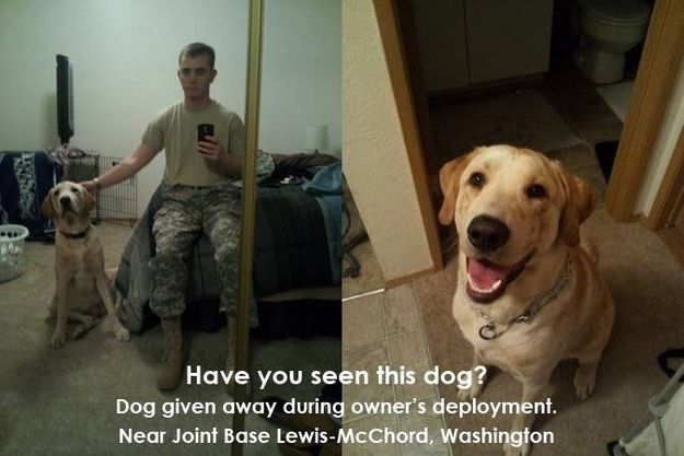 Spread the word! 07/26/2013- Soldier Returns Home From Afghanistan To Discover His Dog Had Been Sold On Craigslist (by the 'friend' who was watching him!)