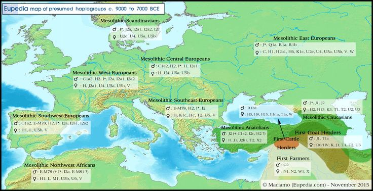 Distribution map of Y-DNA and mtDNA haplogroup in and around Europe circa 8000 BCEe - Eupedia