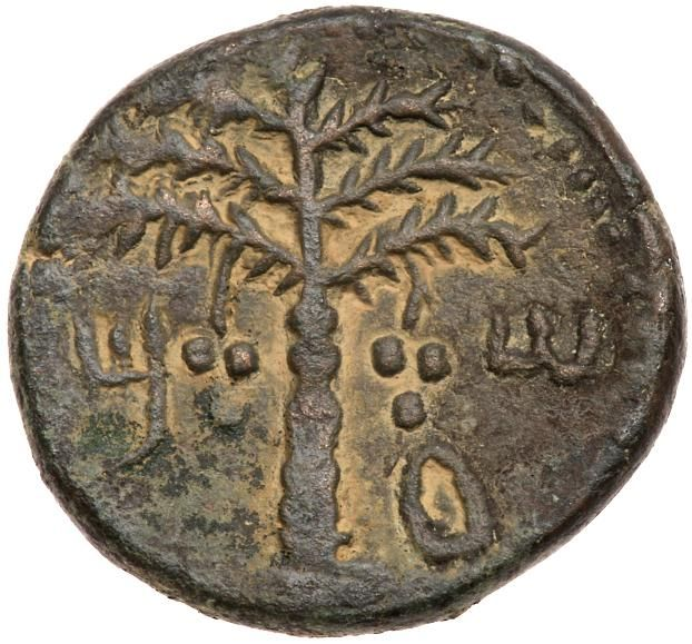 Judaea, Bar Kokhba Revolt. AE Medium Bronze (12.47 g), 132-135 CE Year 1 (132/3 CE). 'Sma' (abbreviating Simon; Paleo-Hebrew), seven-branched palm tree with two bunches of dates. Rev. 'Year one of the redemption of Israel' (Paleo-Hebrew), vine leaf on tendril. (Mildenberg 167 (O6/R6); TJC 258; Hendin 1379a). Very rare - only 4 examples cited by Mildenberg. Brown patina with sandy highlights. Choice very fine. Purchased privately from D. Hendin, July 1989. This is a so-called irregular issue…