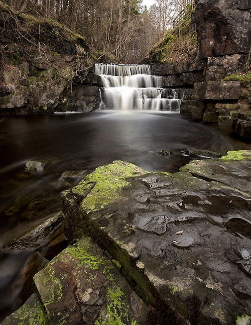 radivs: 'Low Force'- Teesdale, County Durham, England by Nigel...