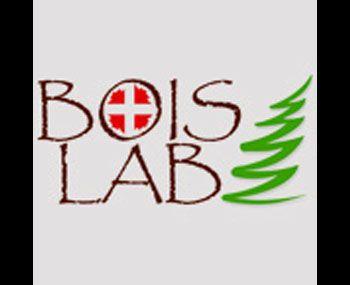 Premio Boislab - 2° classificato