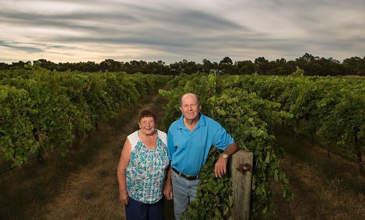 Congratulations to Bob Taplin, pictured here with wife Pat - who was awarded the 2017 Barossa Grape & Wine Association Services to the Industry Award at the recent Declaration of Vintage Ceremony.