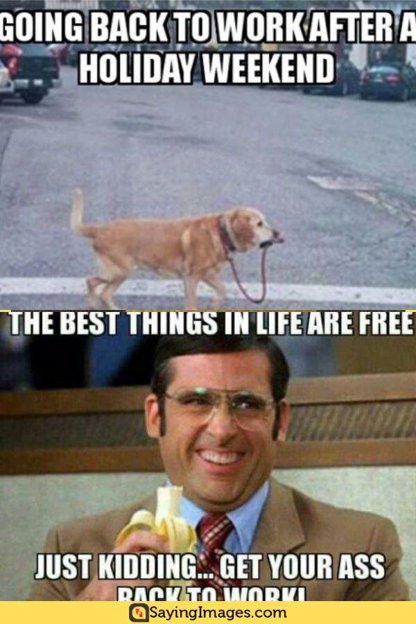 25 Back To Work Memes That Ll Make You Feel Extra Enthusiastic Sayingimages Com Work Memes Back To Work Back To Work Meme