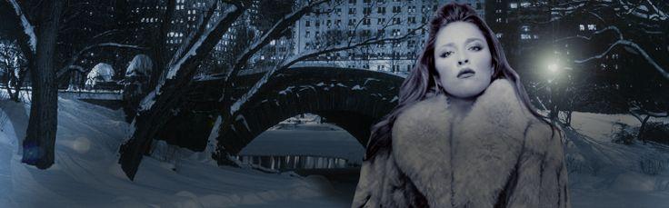 #3D @TAEVision Multimedia @RachelLFilsoof Winter in #CentralPark Gapstow Bridge #Music #NY #NYC #Manhattan #fashion #cosmetics #makeup #Photoshoot