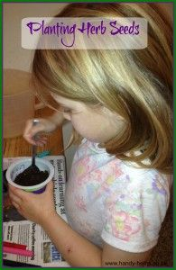 Reasons to grow herbs with children. Growing herbs with children is great fun. Herbs arouse children's curiosity and interest as they stimulate the senses.
