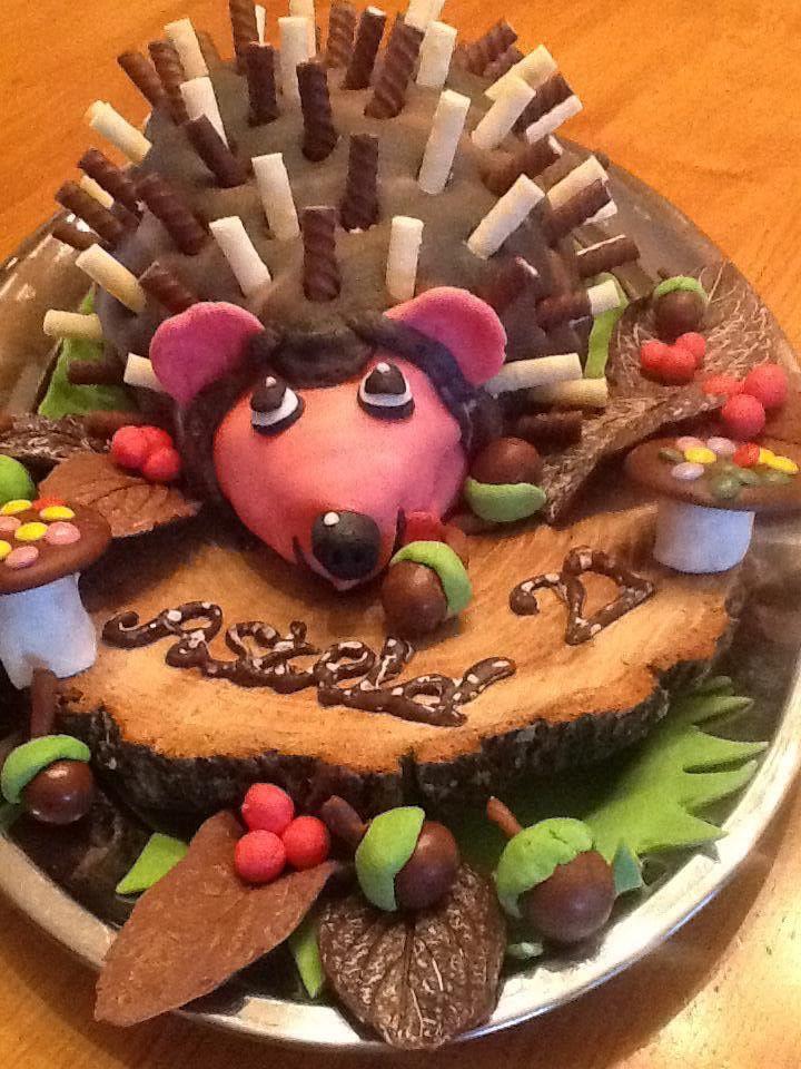 #egel #taart #hedgehog #cake